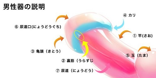 tekoki_03_compressed